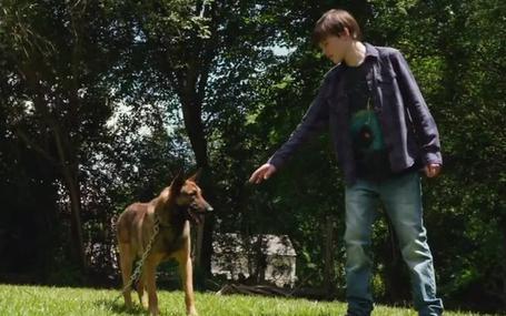 軍犬麥克斯 海軍忠犬/Max