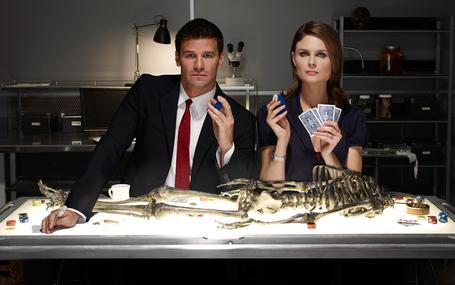 識骨尋蹤 第五季 Bones Season 5