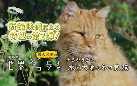 劇場版 岩合光昭の世界ネコ歩き あるがままに、水と大地のネコ家族 劇場版 岩合光昭の世界ネコ歩き あるがままに、水と大地のネコ家族