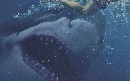 Great White Great White