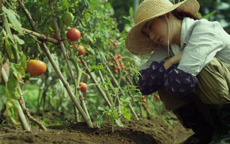 小森食光─夏秋篇 Little Forest - Summer & Autumn