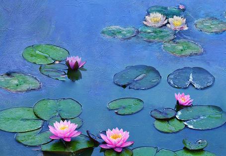 莫內睡蓮的水光魔法 Water Lilies Monet: the Magic of Water and Light