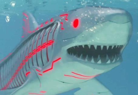 狂暴機械鯊魚 Roboshark
