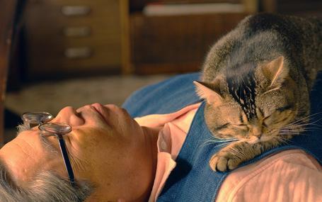 고양이와 할아버지 The Island of Cats, ねことじいちゃん