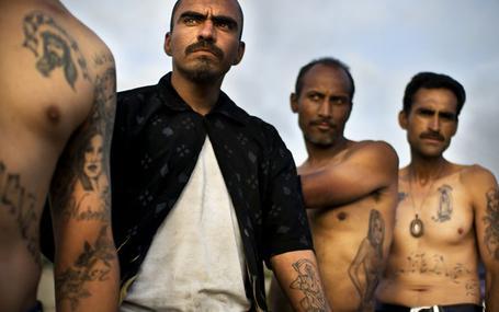 毒梟文化 Narco Cultura