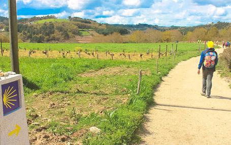 산티아고의 흰 지팡이 Buen Camino