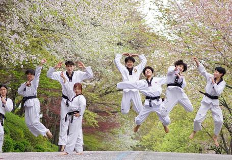 師範:跆拳道領袖 Master: Leaders of Taekwondo