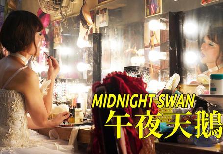 午夜天鵝 Midnight Swan