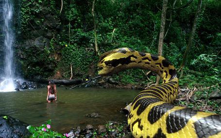 蛇魚怪 Piranhaconda