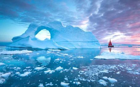 極線生機 Arctic